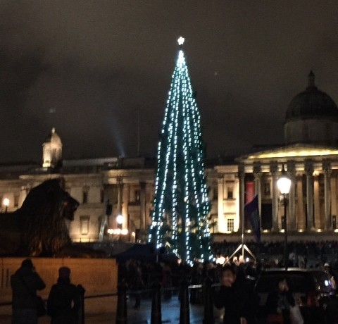 Trafalgar Square Christmas Tree, Beck and Pollitzer event – 4th December 2014